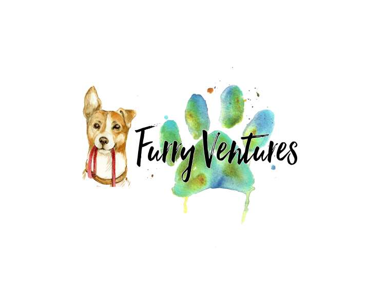 Furry Ventures Pet Care - Member Photo