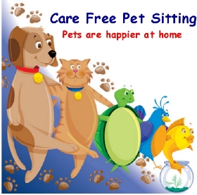 care free pet sitting pet walkers in chincoteague va