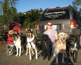 Carefree Companions Pet Care - Member Photo #3