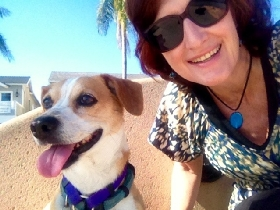 Pet Sitters in Loomis, California