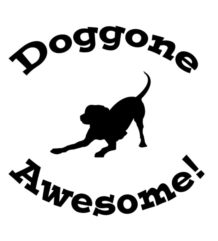 Doggone Awesome! LLC Pet Sitting Services | Pet Sitter in