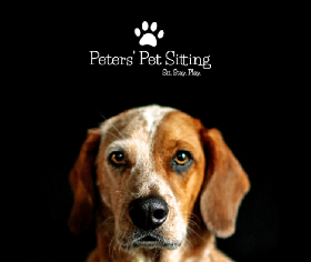 Pet Sitters in Avon, Indiana