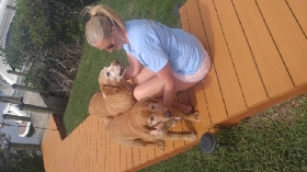Pet Sitters in Indialantic, Florida