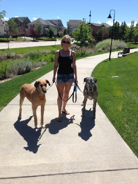 Pet Sitters in Aurora, Colorado