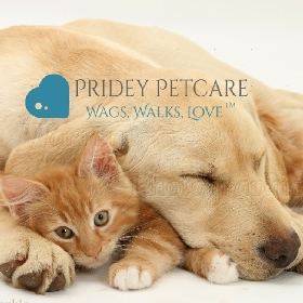 Pet Sitters in San Diego, California