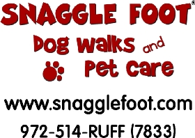 Pet Sitters in Irving, Texas