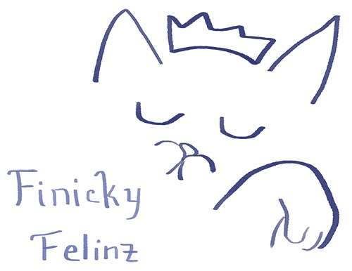 finicky felinz - Member Photo