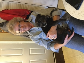 Pet Sitters in Garwood, New Jersey