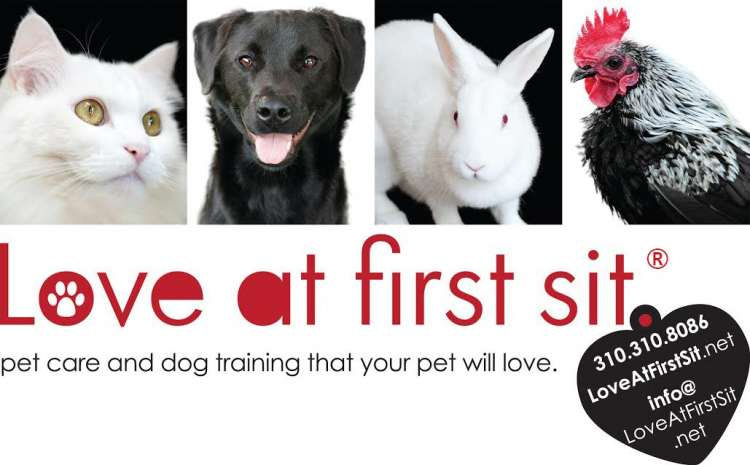 Love At First Sit® - Member Photo