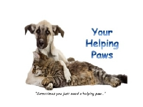 Pet Sitters in Georgetown, Texas