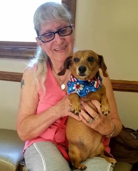 Pet Sitters in Sellersville, Pennsylvania