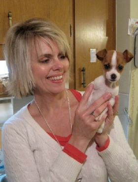 Pet Sitters in Greer, South Carolina