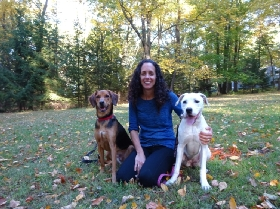Pet Sitters in Belvidere, New Jersey