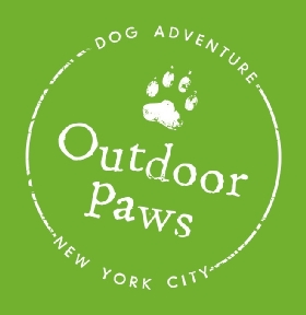 Dog Walkers in New York, New York