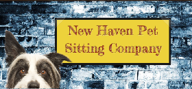 Pet Sitters in Fairfield, Connecticut