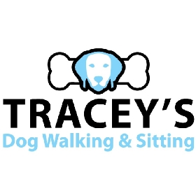 Tracey's Dog Walking & Sitting - Member Photo #2