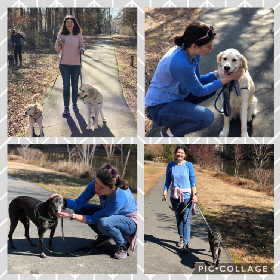 Pet Sitters in Carrboro, North Carolina