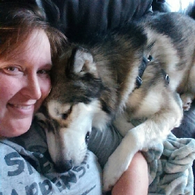 Pet Sitters in Council Bluffs, Iowa
