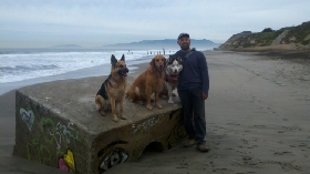 Dog Walkers in San Francisco, California