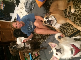 Pet Sitters in Lake Worth, Florida