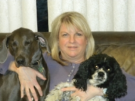Pet Sitters in Matteson, Illinois