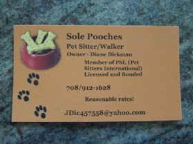 Sole Pooches - Member Photo #3