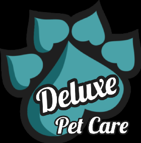 Pet Sitters in Framingham, Massachusetts