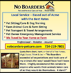 No Boarders - Pet and Animal Care - Member Photo