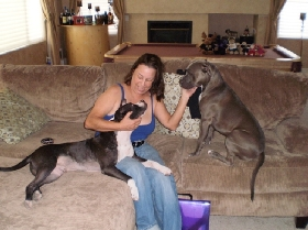 Pet Sitters in Las Vegas, Nevada