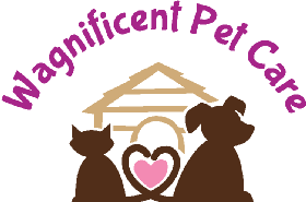 Pet Sitters in Lake George, New York