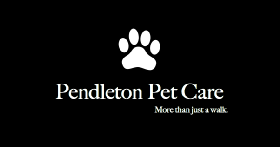 Pet Sitters in Palm Harbor, Florida