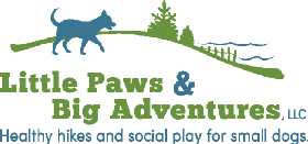 Little Paws and Big Adventures, LLC - Member Photo