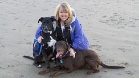 Pet Sitters in Kenmore, Washington