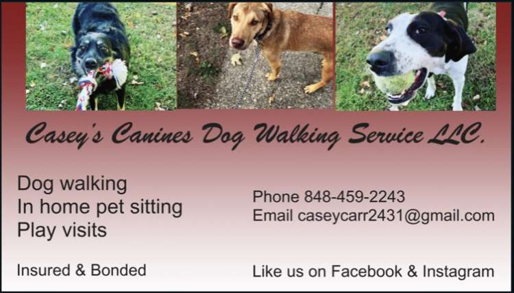 Casey's Canines Dog Walking Service LLC - Member Photo