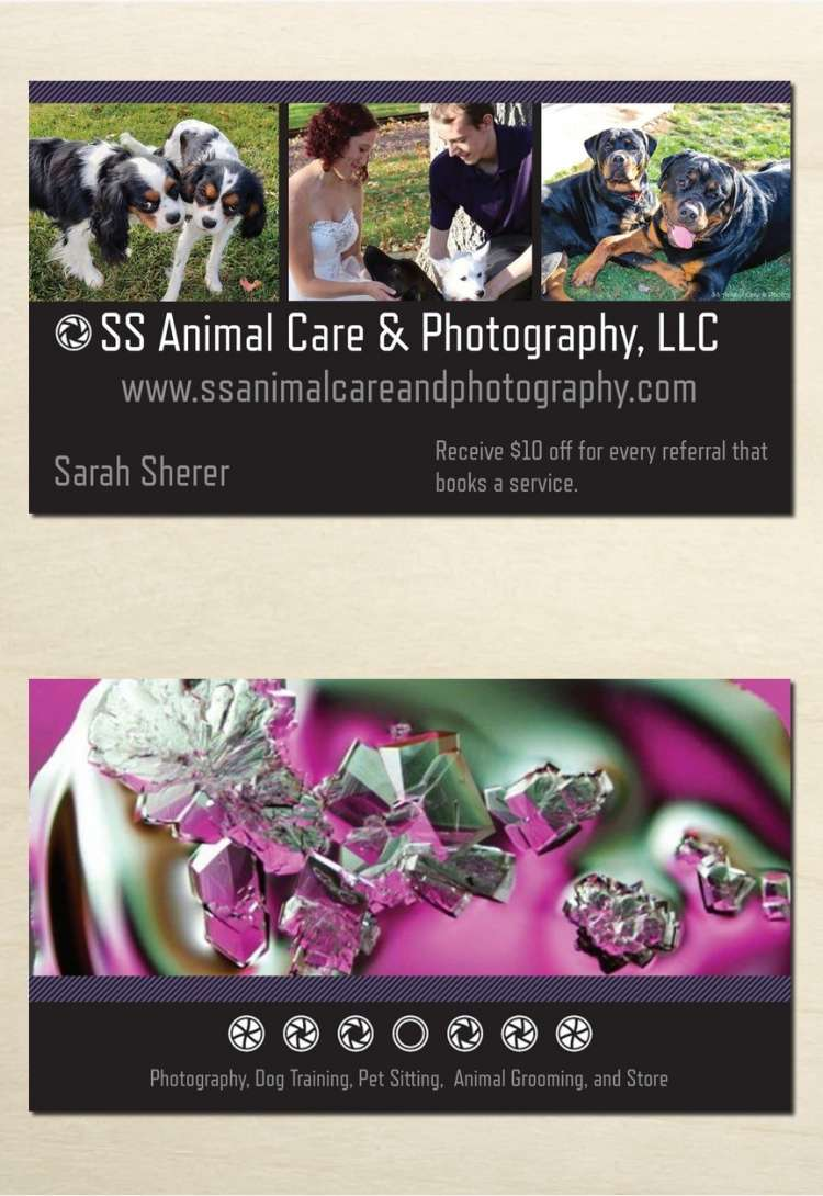 SS Animal Care & Photography LLC - Member Photo